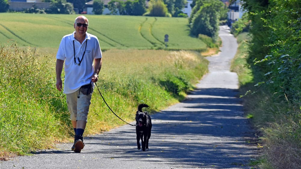 Dogwalking Gassi-Service
