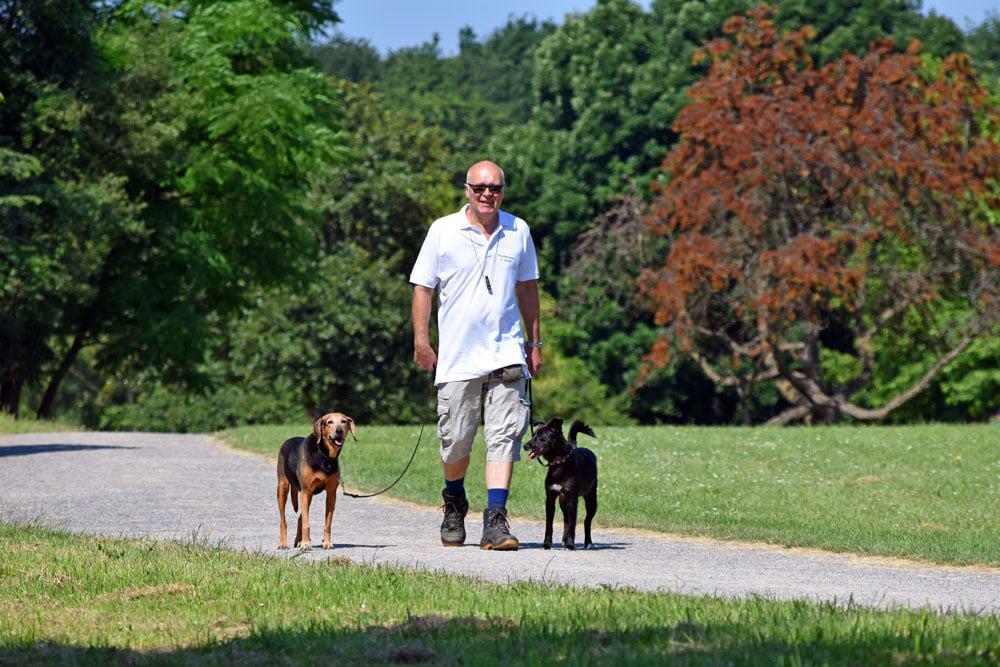 Dogwalking mit Andreas Seidel – Gassi-Service
